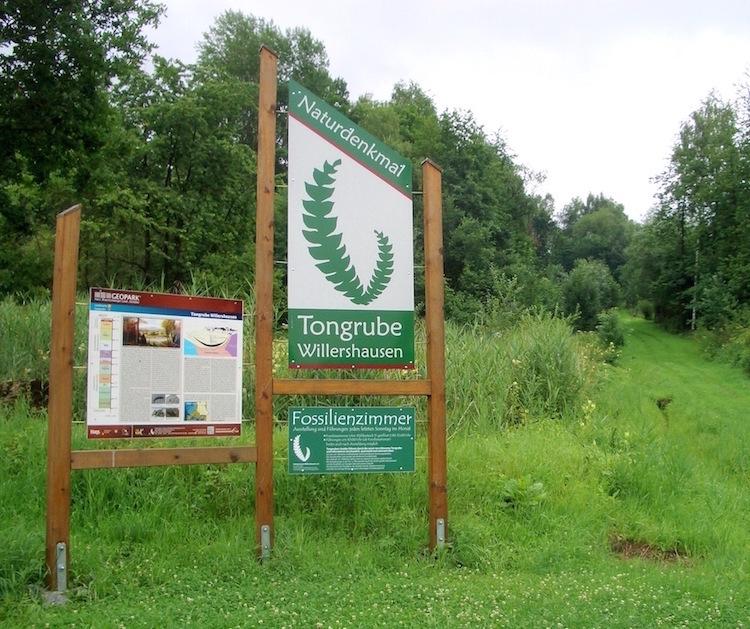 Weg zur Tongrube mit Infotafeln. – Heimat.Museum.Südniedersachsen